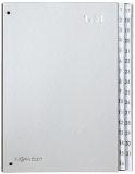 Pultordner Color-Einband - Tabe 1 - 31, 32 Fächer, Farbe silber